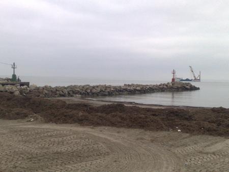 Panoramica del Porto Garibaldi
