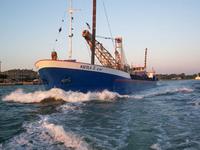 The motor vessel Nicola Z