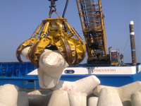 Tetrapod laying in Pesaro's offshore port